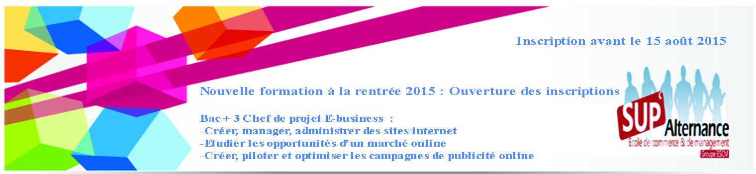 Chef de Projet E-Business à Strasbourg