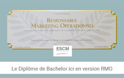 Le Responsable Marketing opérationnel