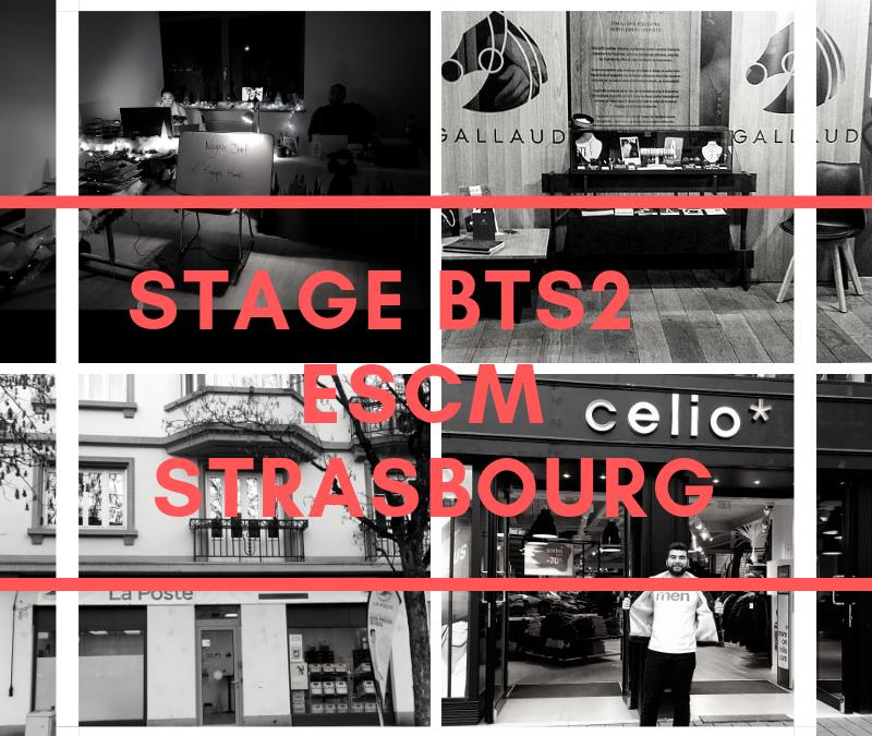 BTS2 – Retour à l'ESCM